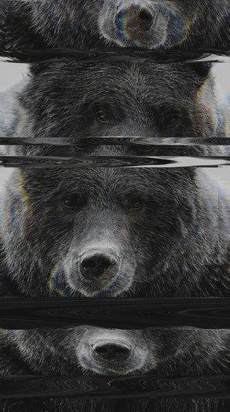 Bear Glitch Art Print by Cedric S Touati