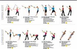 trx posters  trx workouts routine trx workouts all body