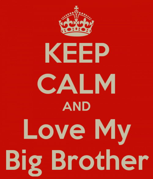 Big Sister To Brother Quotes: Best 25+ Big Brother Quotes Ideas On Pinterest
