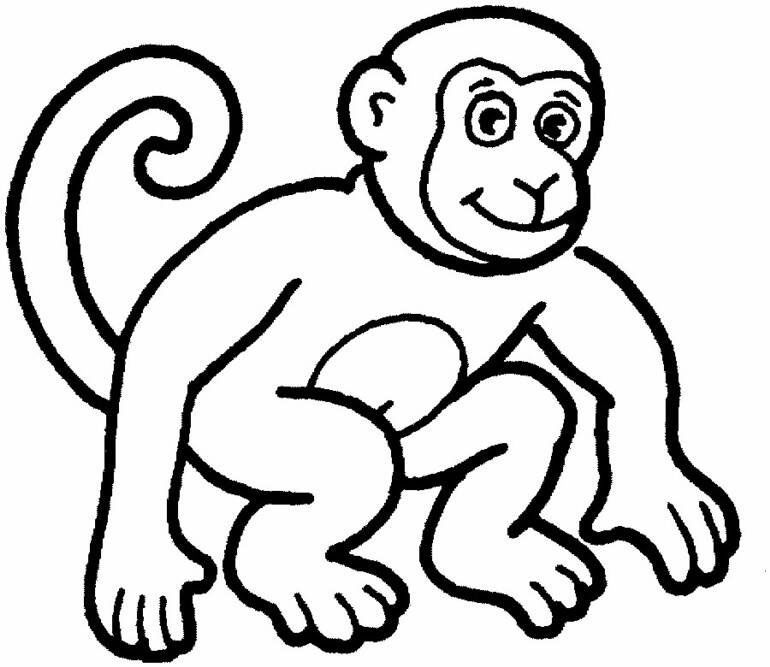 Lovely Monkey Coloring Pages | Monkey Coloring Pages | Coloring Page
