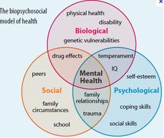 Biopsychosocial Model Mental Health  Books Worth Reading