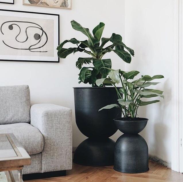 Plant Dine Yndlingsplanter I De Smukke Urtepotter For En Smuk Botanisk Indretning De Skonne Urtepotter Fra Ferm Livings Hour Urtepotter Boligindretning Vaegure