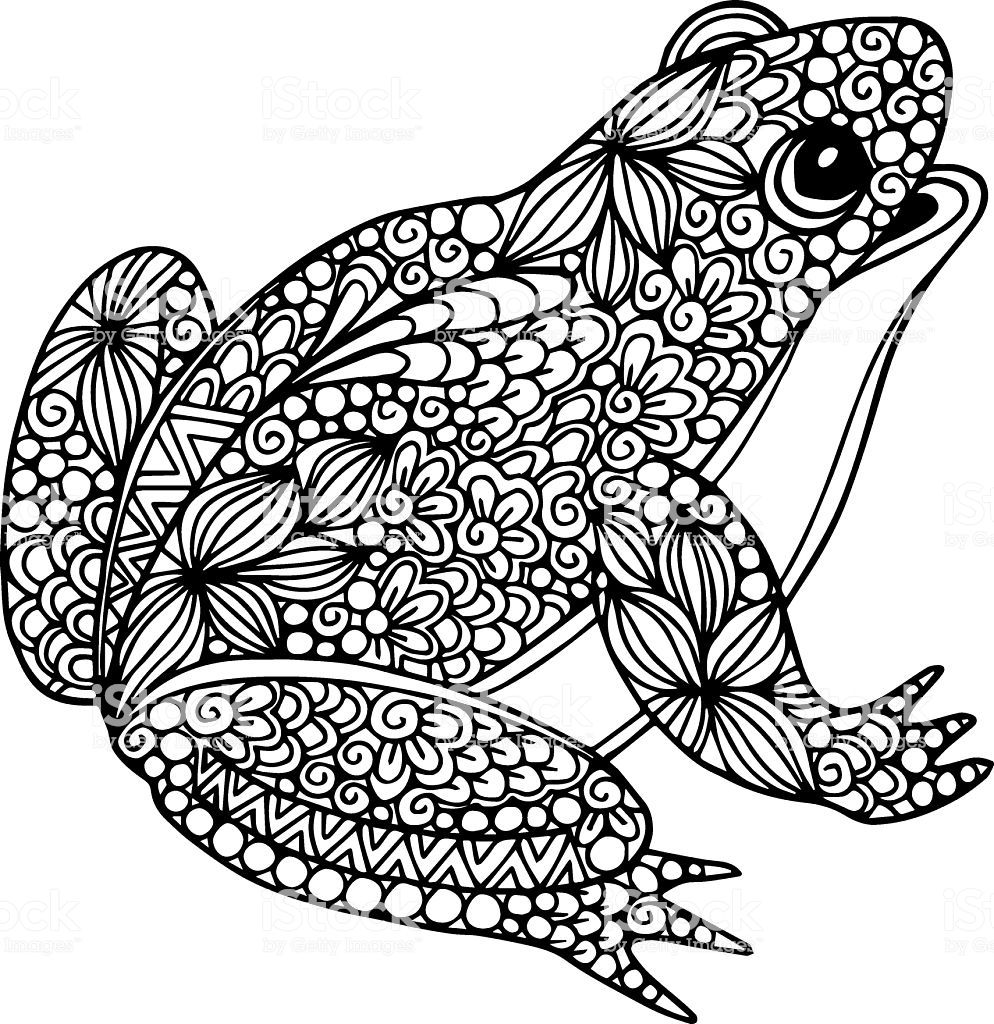 Decorative Ornate Doodle Frog Illustration With Abstract Outline Frog Coloring Pages Mandala Coloring Pages Coloring Pages