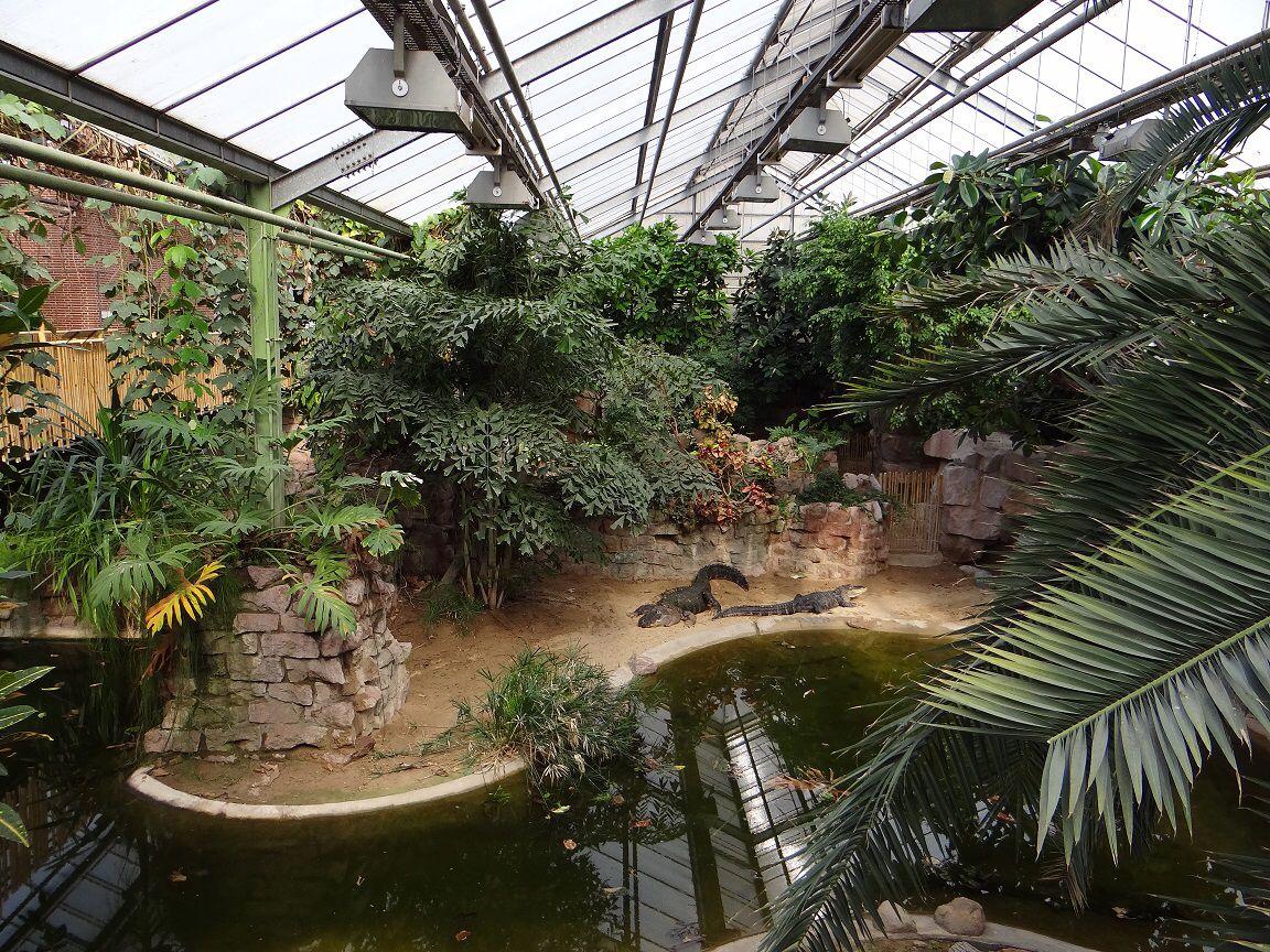 Kebun Binatang Atlanta