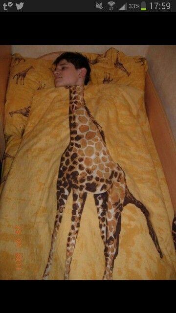 Giraffe Bed Sheets I Must Own This Giraffe Bones Funny Funny