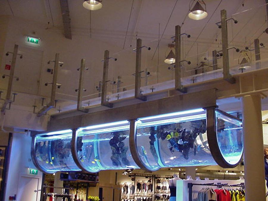 Acrylite block used for store interior display at a scuba for Aquarium shop
