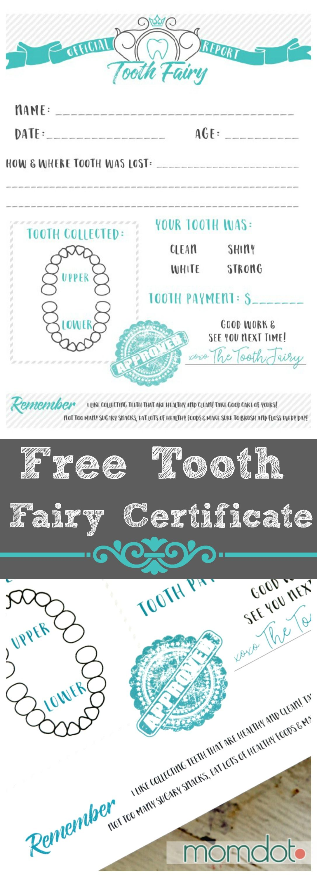 tooth fairy printable certificate printable