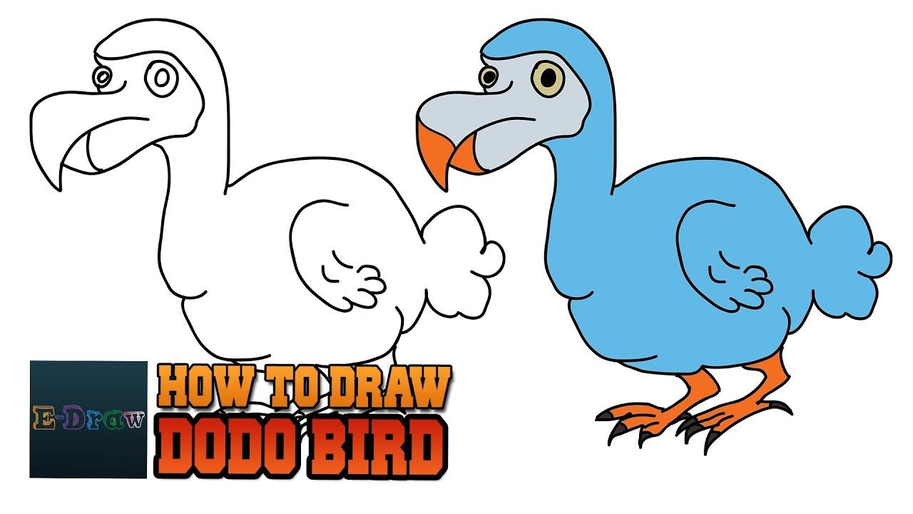 How To Draw A Dodo Bird Cartoon Dodo Bird For Kids Step By Step