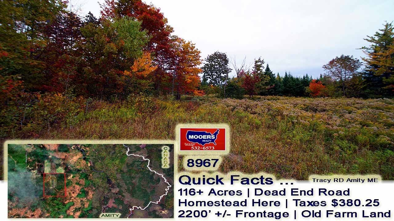 Old Maine Farm Property 116 Acres Of Amity Me Land Mooers Realty Maine Real Estate Acre Farm