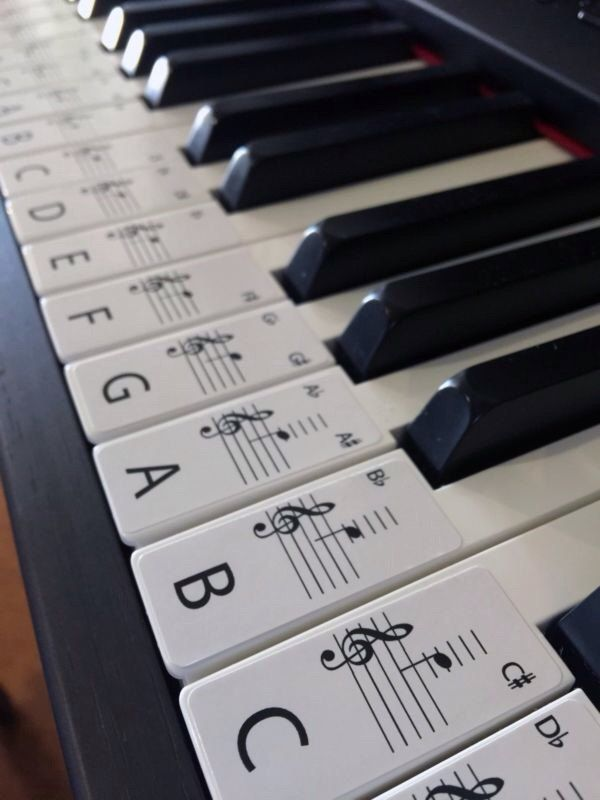 It is an image of Versatile 61 Key Piano Labeled