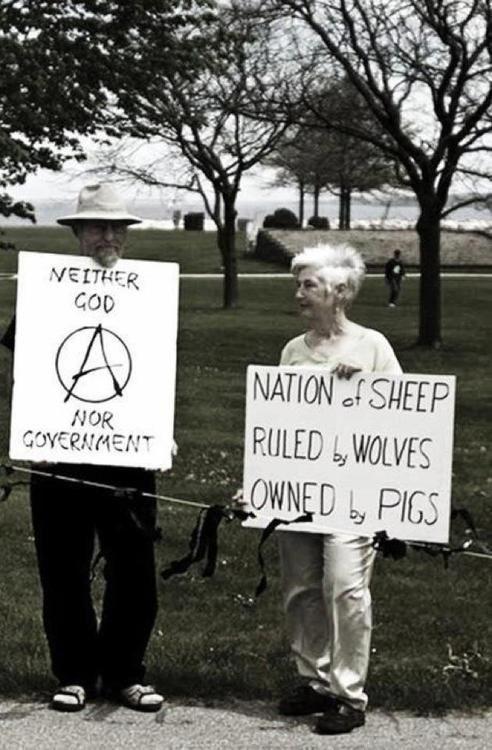 23 Anarchy Ideas Anarchy Anarchism Anarchist