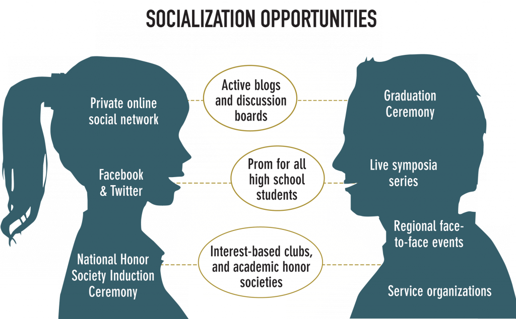 Socialization Opportunities Effective Online Learning Online Learning Online High School Educational Infographic