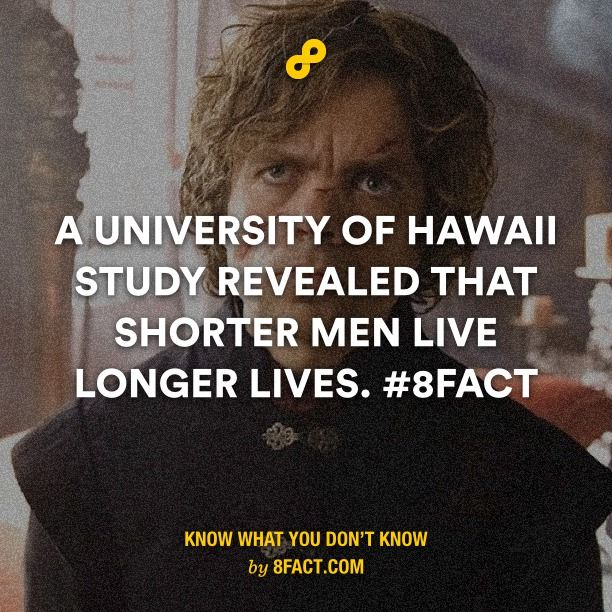 I don't know what to study (uni)?