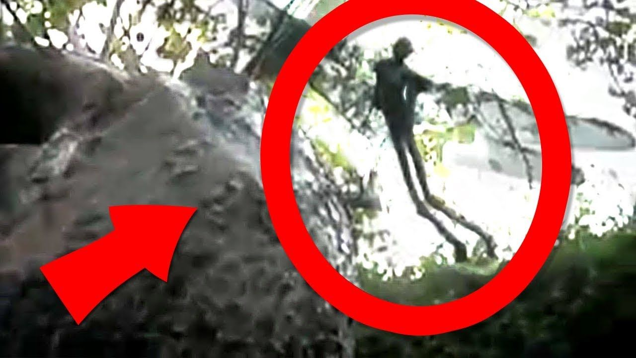 5 Real Fairies Caught On Camera Youtube Real Fairies Fairy Pictures Fairy
