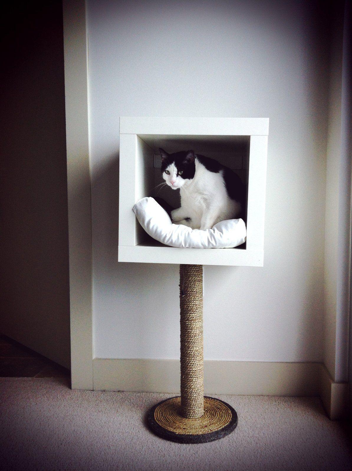 12 geniale IKEA Hacks, speziell für deine Katzen, die du
