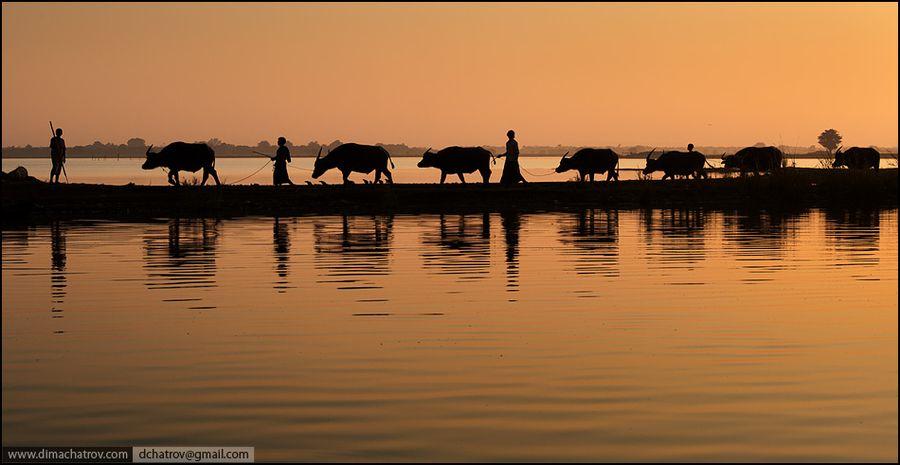 121clicks.comMyanmar (Burma) - Golden Land for Photographers - 121Clicks.com