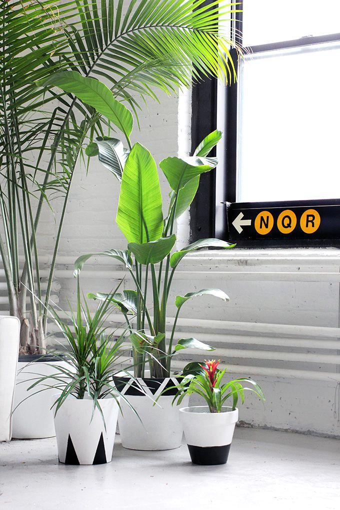 Diy Potted Plants … Como Hacer Macetas Macetas Hacer 400 x 300