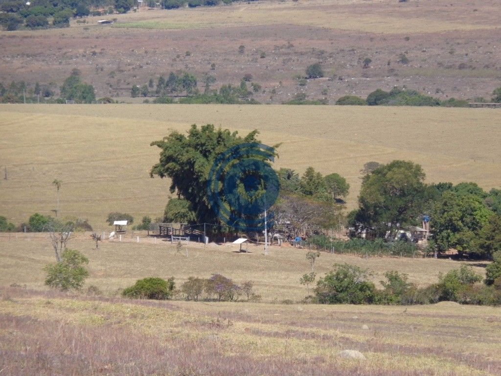 Belíssima fazenda de 19 alqueires goianos no município de Cocalzinho de Goiás, casa de caseiro, casa sede muito boa com energia solar, suíte, lindo jardim na frente da casa, piscina, água por gravidade, córrego no fundo, curral, toda cercada no arame liso, não possui estrada passageira nela, apenas 2 km de chão, pasto formado.  Falar com Laesse Junior corretor de imóveis creci 22395 Fones: (62) 99245-6963 whatsapp / 98214-9218 / 99821-1487 ou www.candidoeoliveira.com.br