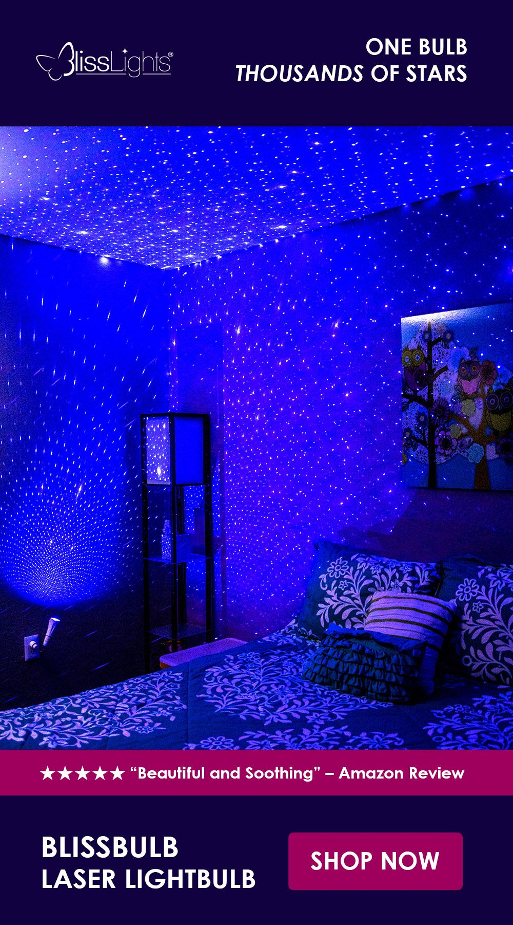The Blisslights Blissbulb Will Transform Any Room Special Event Holiday Or Display With The Magic Of Thousan Blisslights Music Room Organization Dream Rooms