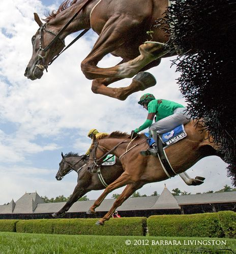 Steeplechase A Look Back At Saratoga 2012 Part 2 Daily Racing