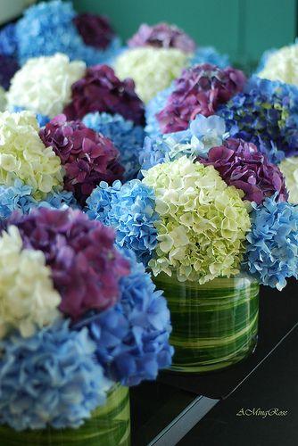 Hydrangea Centerpieces Blue Purple White Blue Wedding Centerpieces Hydrangea Centerpiece Blue Centerpieces