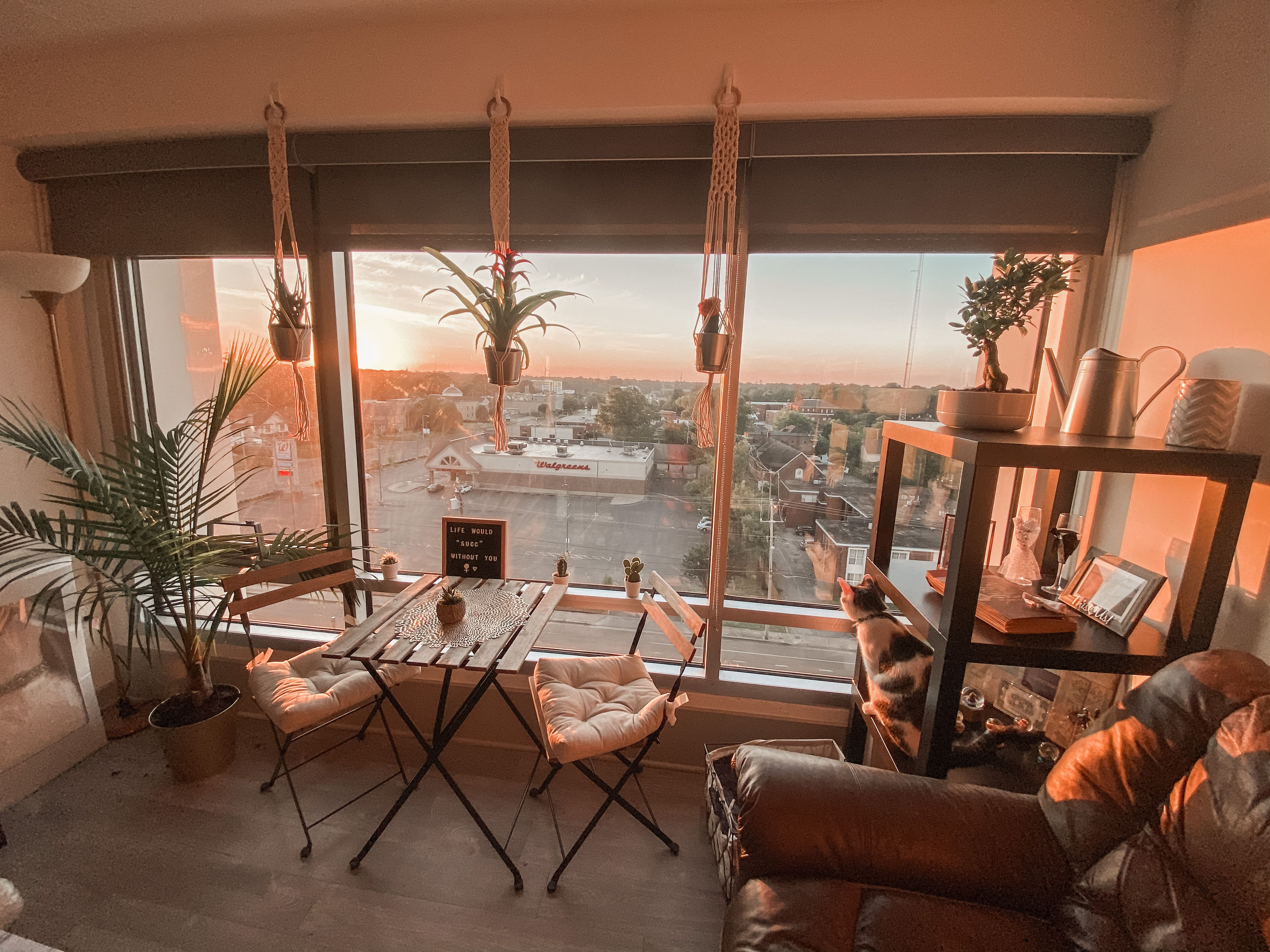 Sunrise In Our Living Room Every Morning Cafe Interior Design Cafe Design Cafe Interior