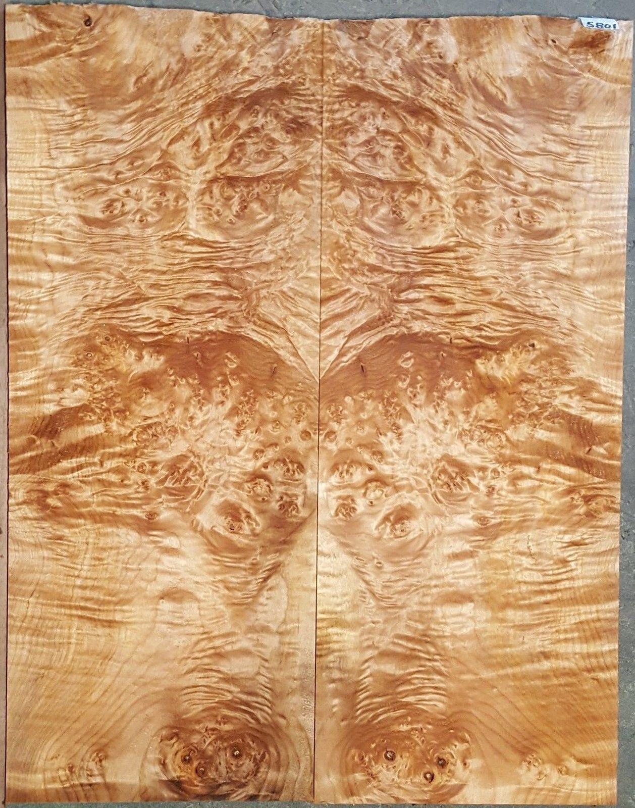 Birdseye Maple Tree