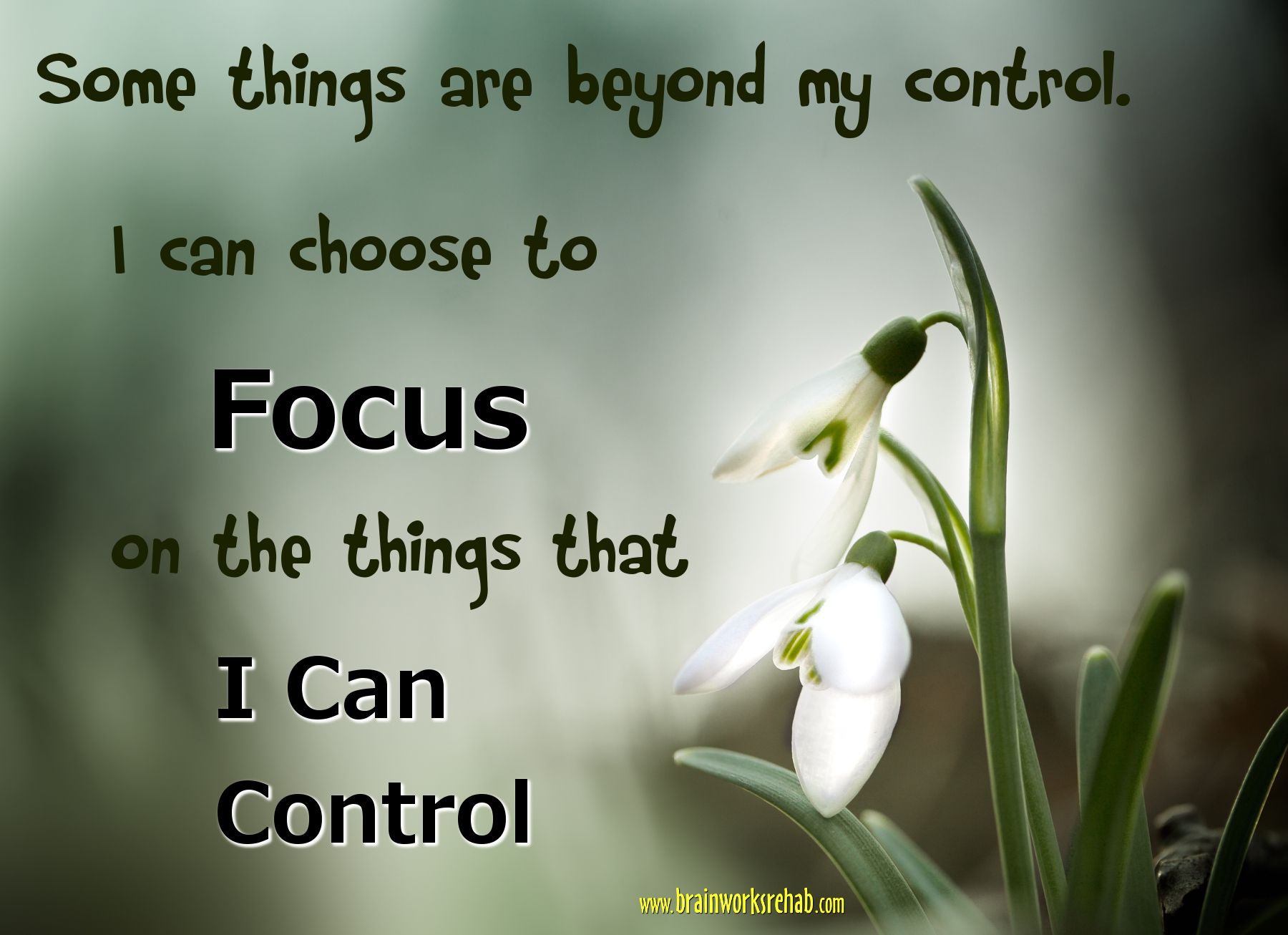 Some Things Are Beyond My Control. I Can Choose To Focus