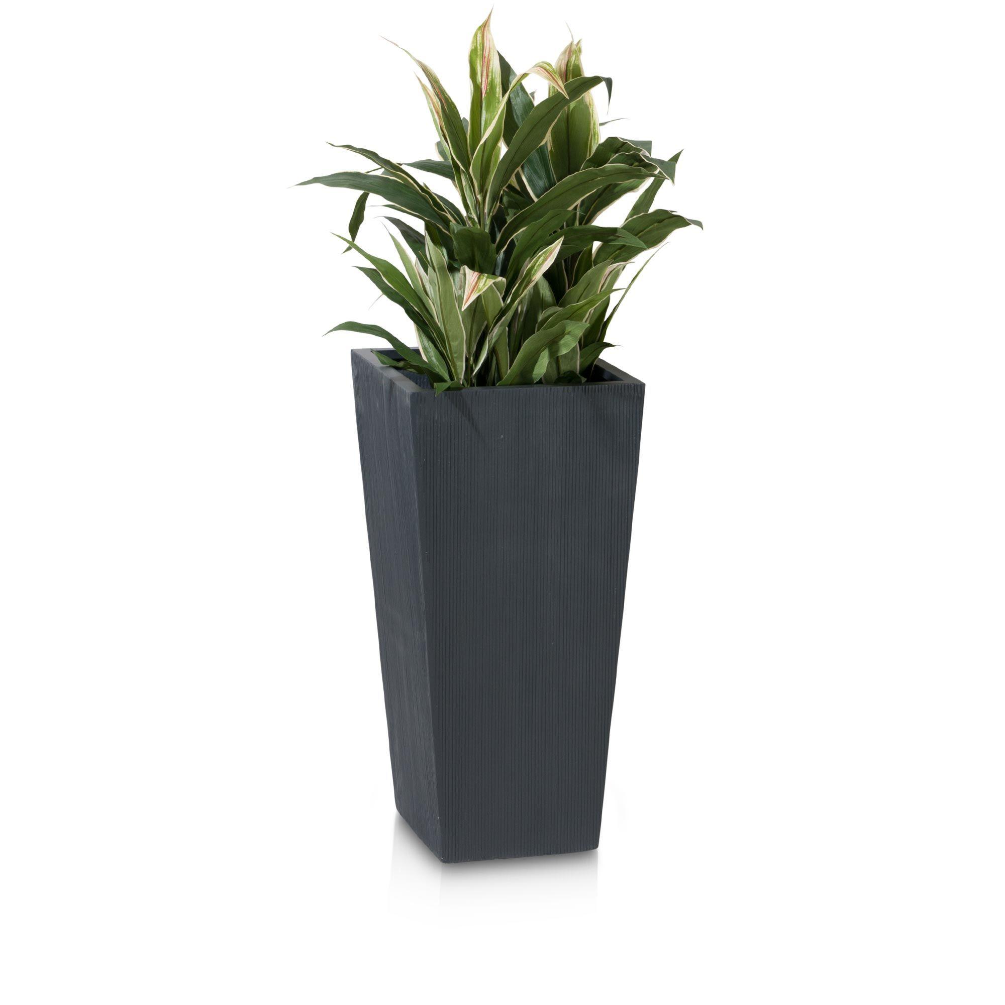 Lavia 70 Is A Plant Pot Made Of Fibreglass It Has A Modern Shape