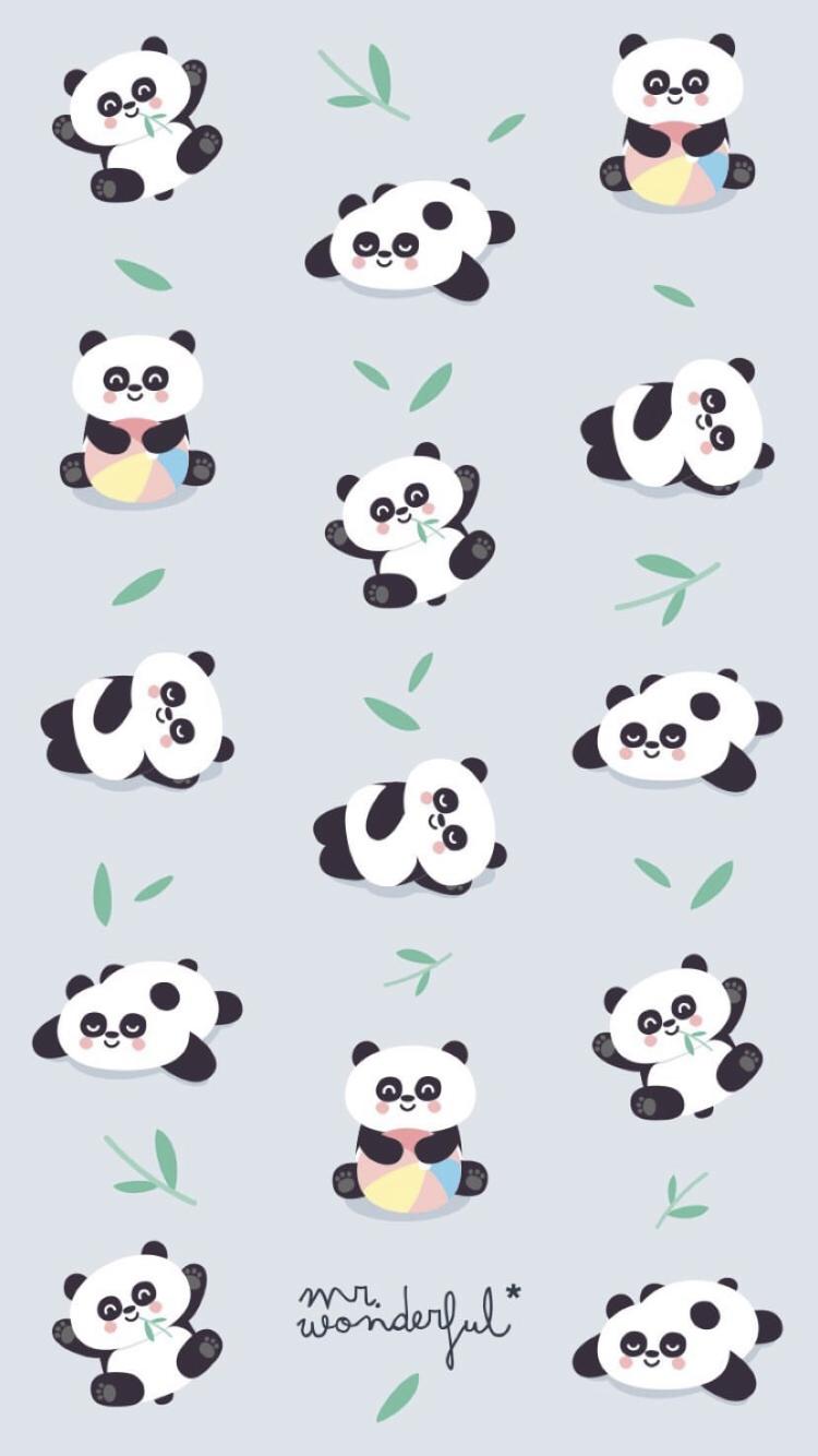 Wallpaper De Mr Wonderful Instagram Fondosgestionadospormimisma Panda Wallpapers Cute Panda Wallpaper Wallpaper Iphone Cute