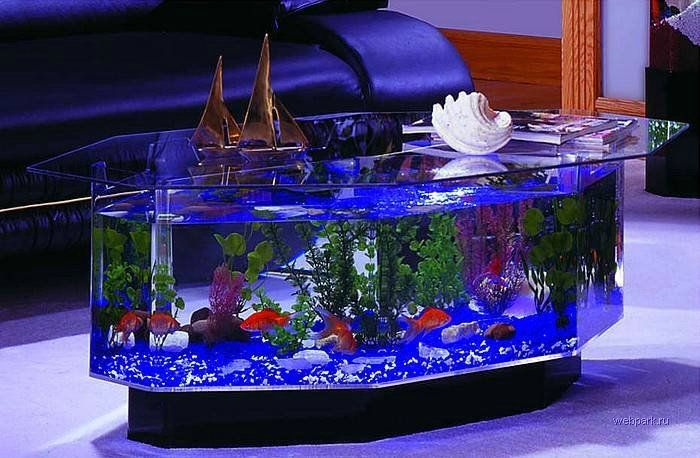 Pin By Kim Mertes On Home Fish Tank Coffee Table Home Aquarium