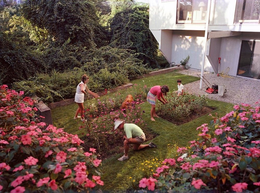 The Photographer in the Garden is part of Family garden Photography - A new collection of photographs shows how photographers have been inspired by nature