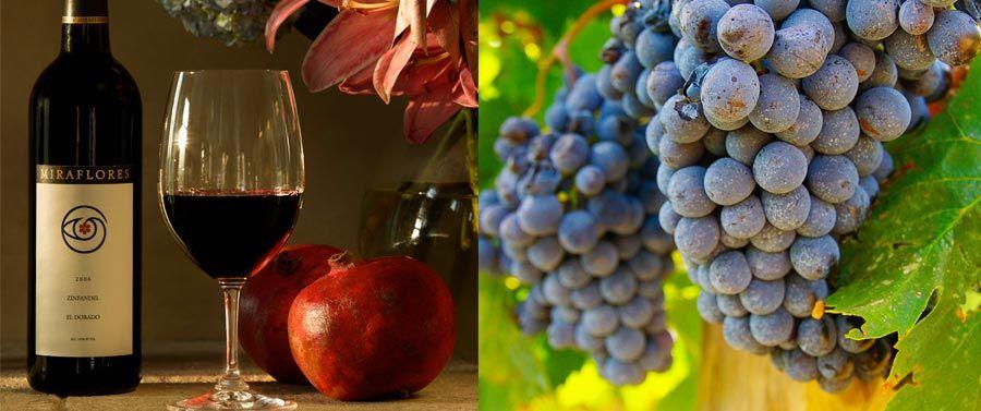Miraflores winery located in the sierra foothills of el