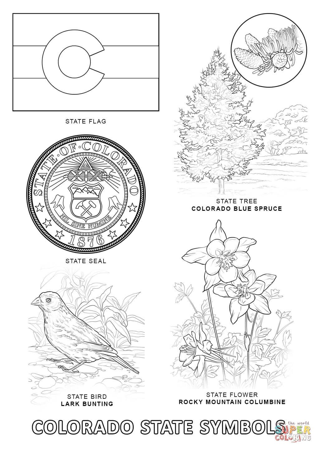 Colorado State Symbols Super Coloring Free Printable Coloring