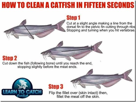 How To Clean A Catfish In 15 Seconds Catfish Fishing Catfish Survival Fishing