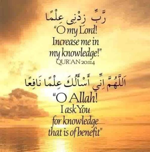 The first source of islamic jurisprudence is quran and the sunnah is islam muslim altavistaventures Images