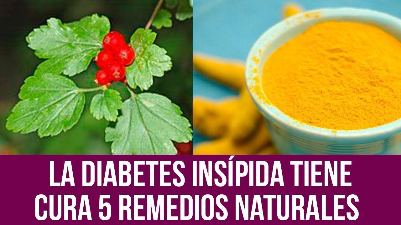 nuevo medicamento a base de hierbas para la diabetes