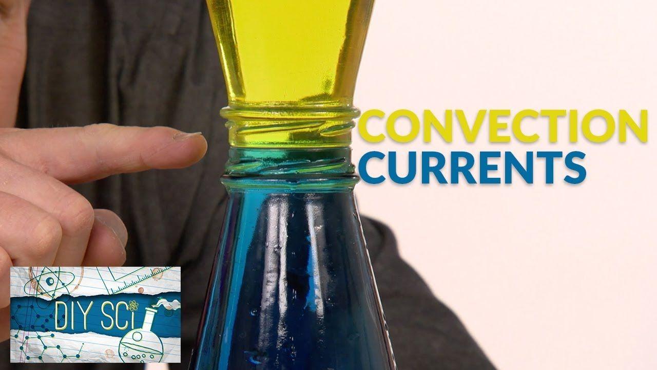 Colorful Convection Currents DIY Sci Convection