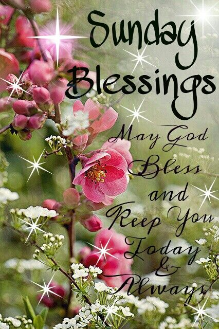 Sunday Blessings to You: I hope you have a wonderful day!! #newday #peace #blessings