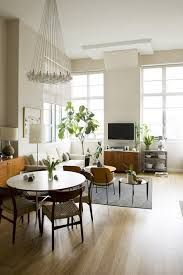 Resultado de imagen para small apartment  plants