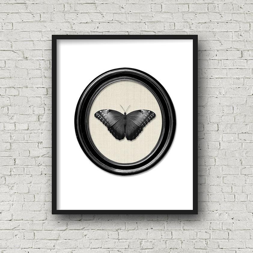 Black butterfly gothic decor printable modern victorian specimen photo collage
