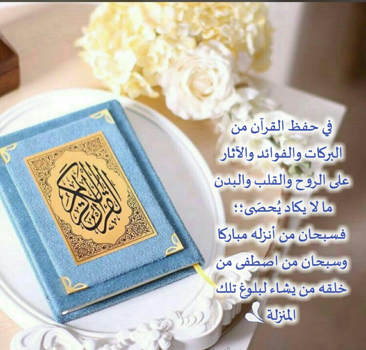 Pin By نور الإسلام On قراني Holy Quran Islam Quran Quran