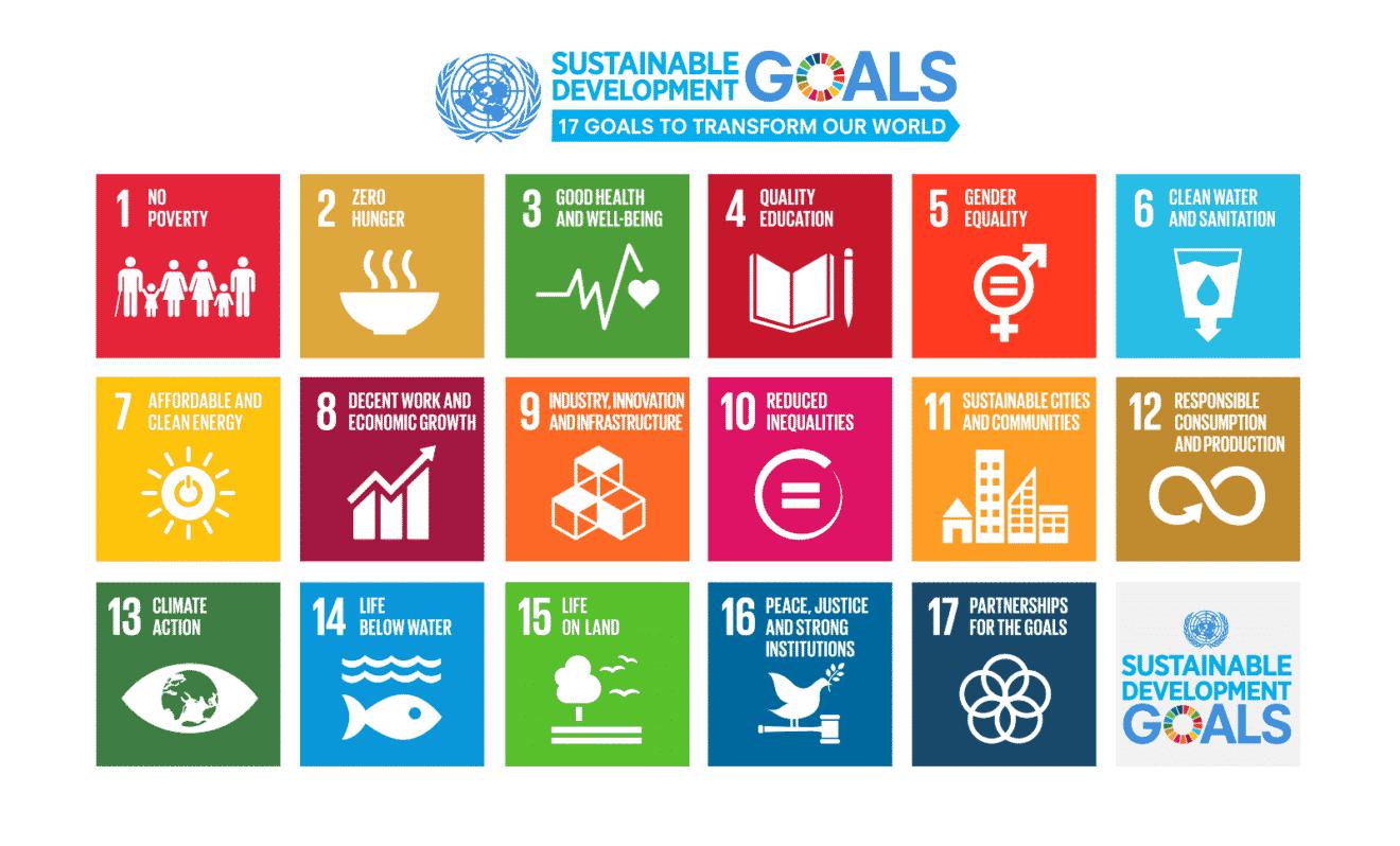 The World Pants After Un S New Urban Agenda Un Sustainable Development Goals Sustainable Development Goals Sustainable Development
