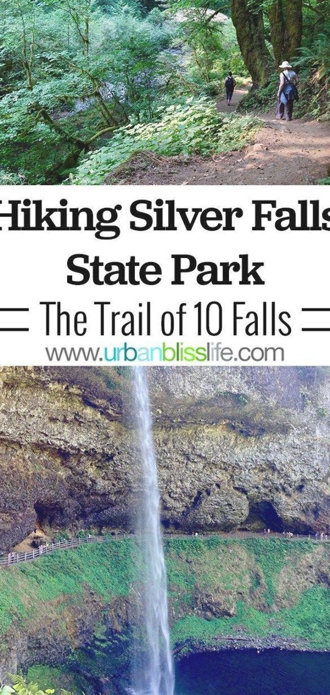 Silver Falls State Park is Oregon's largest state park and offers year-round hiking trails that feature 10 stunning waterfalls. Learn more about this Pacific NW travel hot spot on  #outdoortravel #adventuretravel #hiking #oregon #portlandoregon #outdooradventures #adventure #hikes #traveloregon