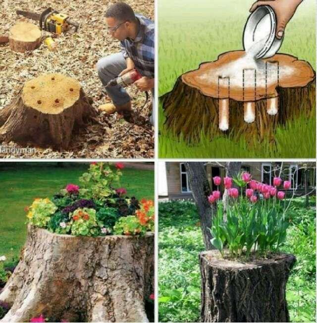 Tree Stump Mini Garden Garden Yard Ideas Garden Projects Tree
