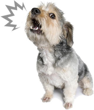 Dog Barking And Howling Graphic 372h Dog Obedience Dog Barking Dog Training Barking