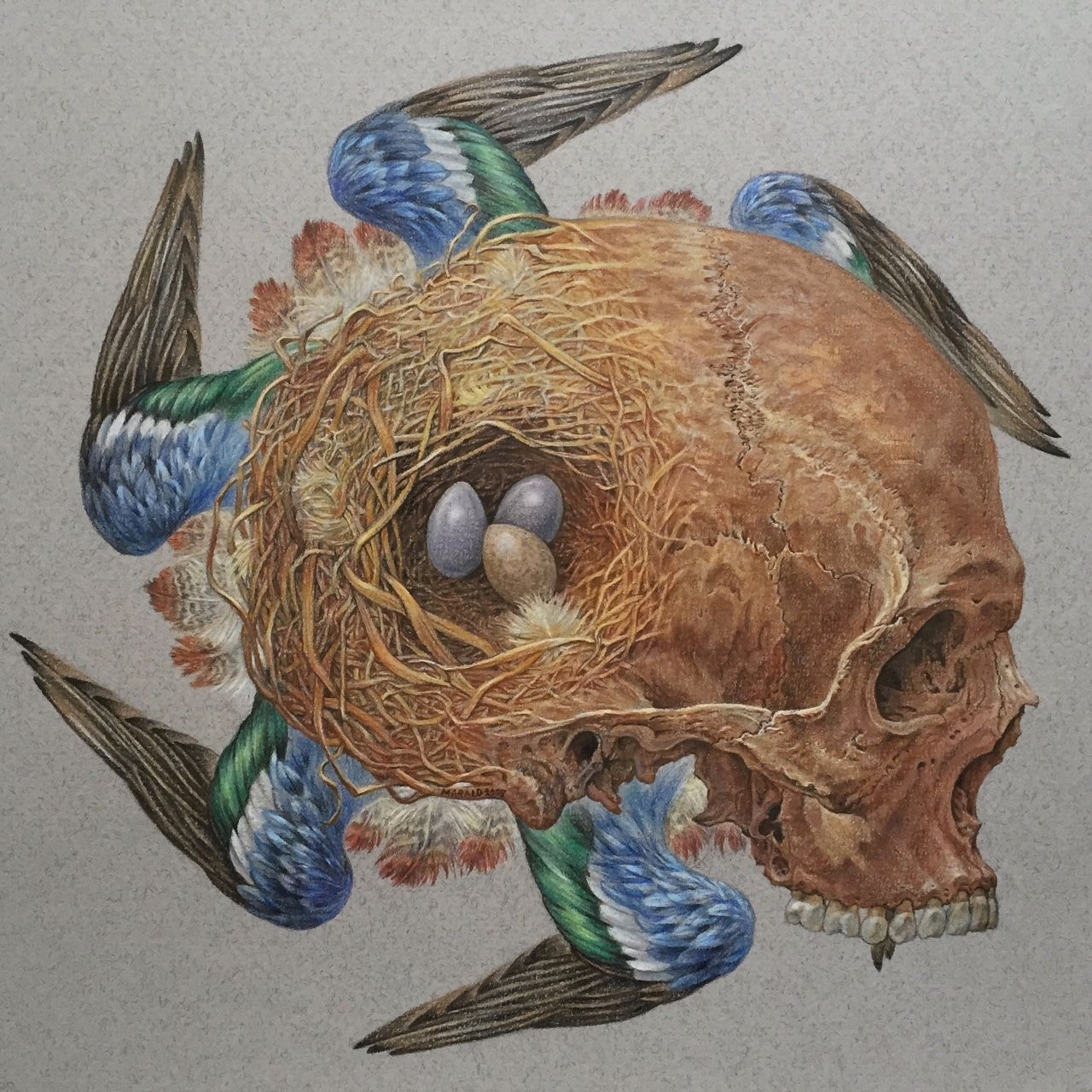 Full view of my latest work; color pencils and paint stage done ...