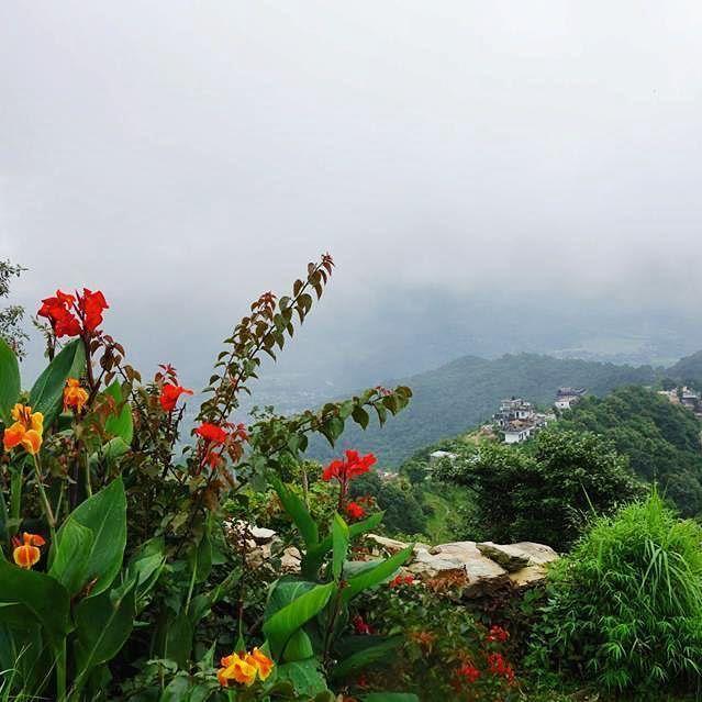 Misty mountaintop. #ddRoams #didianddhai #nepal