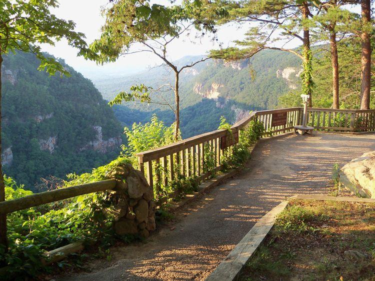 Garden Walk Chattanooga: Cloudland Canyon State Park, GA Near Chattanooga Lookout