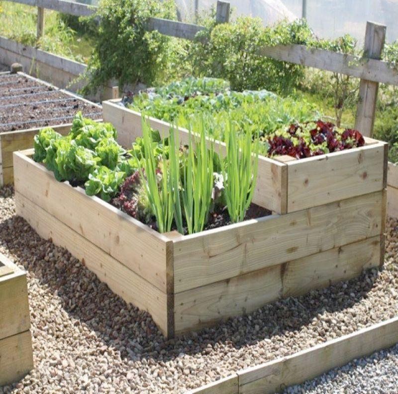Raised Garden Bed Ideas Australia Its Garden Landscaping Designs